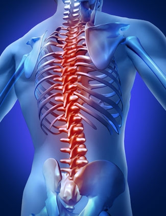 What Can I Expect During My First Visit to North Country Chiropractic?